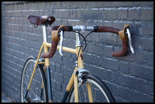 Horse_Cycles-PINP.jpg