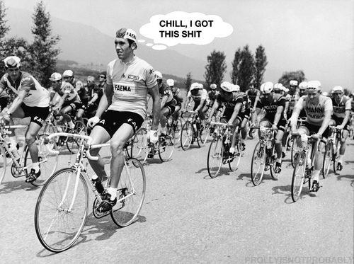 Chill_Merckx-PINP.jpg