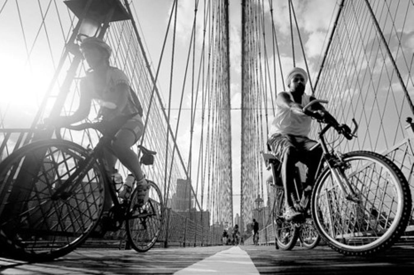 Cyclists.jpg