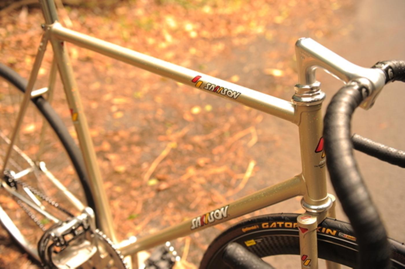 gold-sparkle-samson-2229_5.jpg